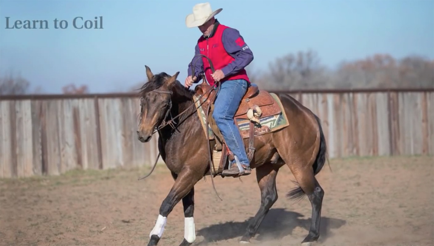 Russell Dilday cow horse