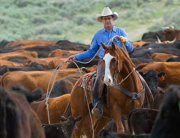 Tim Cox on ID Ranch.