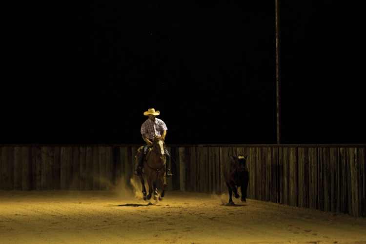 Boyd works with a 3-year-old cow horse prospect by Boonie Tunes.