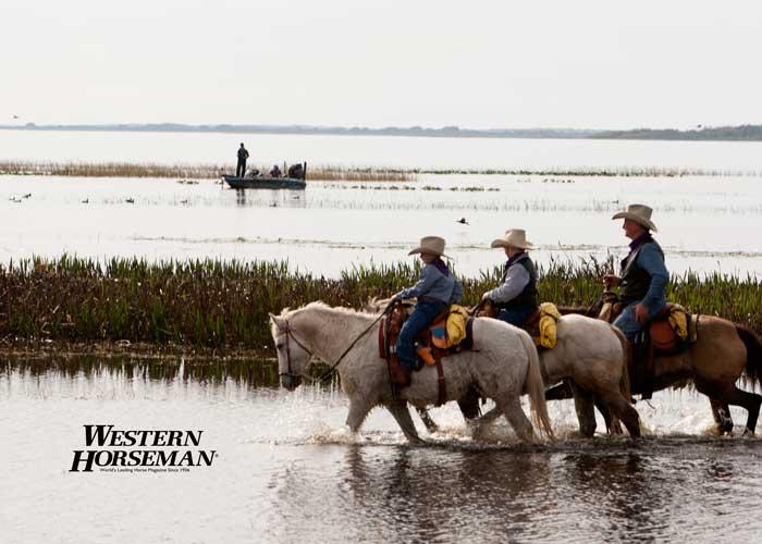 ch FL Cattle Drive 16 IMG 8106