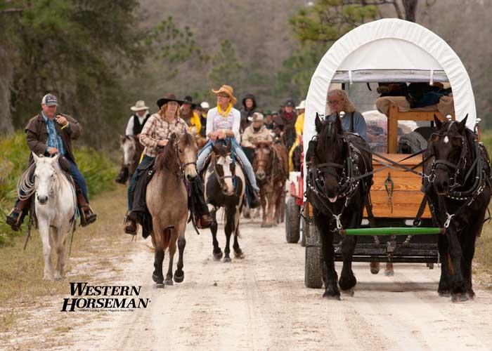 ch FL Cattle Drive 16 IMG 8327