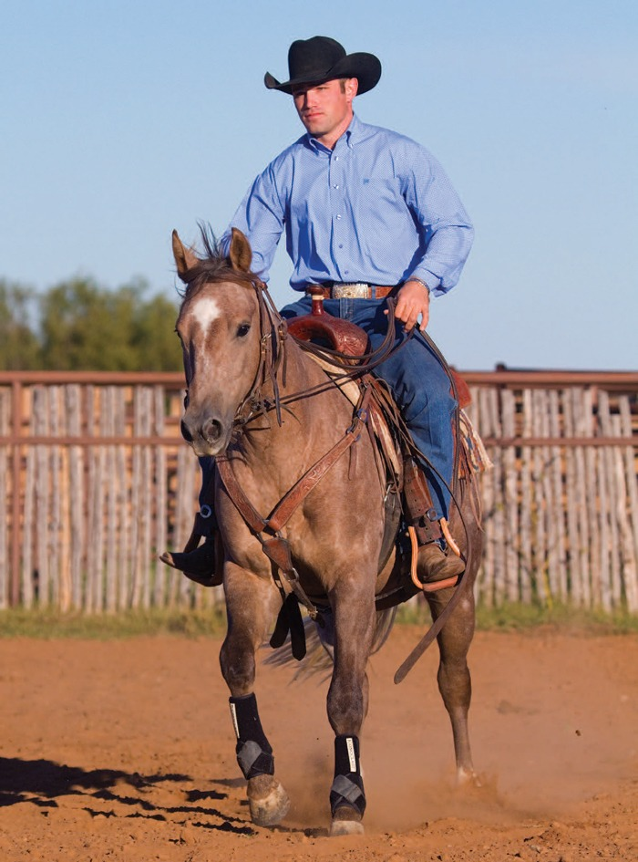 Avoid Ruts with Robert Forst cow horse trainer
