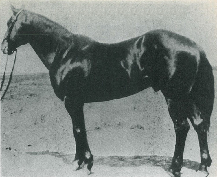 JoeHancock1927