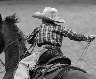 Young cowboy swinging rope and riding horse.
