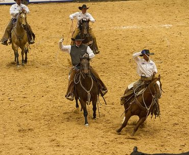 The team of Wilson Cattle and Haystack Cattle Co. won the 2017 World Championship Ranch Rodeo in Amarillo, Texas.