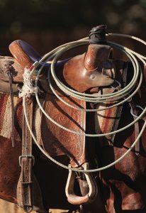 Mortenson Saddle