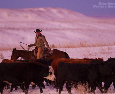170118 IX Ranch 085