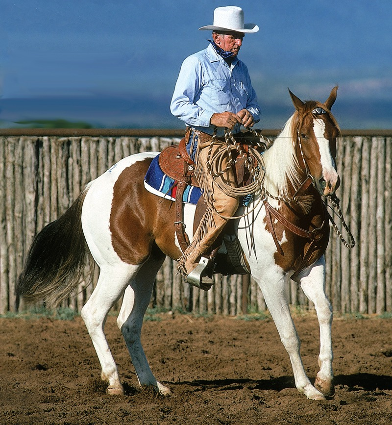 Ray Hunt on paint horse