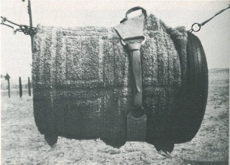 Riggin strapped on buckin barrel