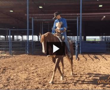 Wagon Wheel Recap video