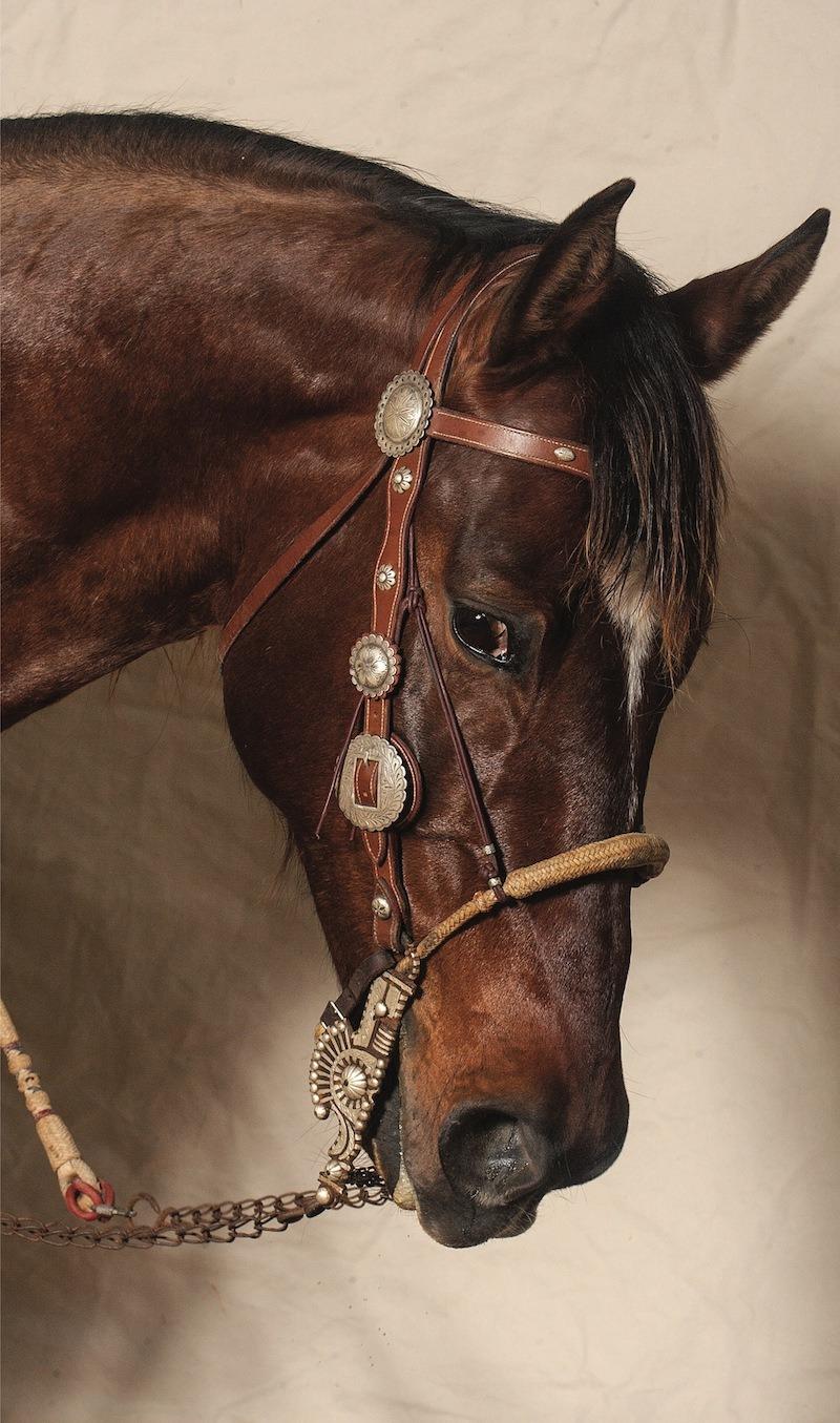 Buckaroos Cowpunchers Western Horseman