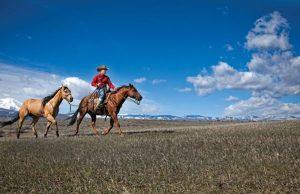Aaron Ralston ponies another horse.