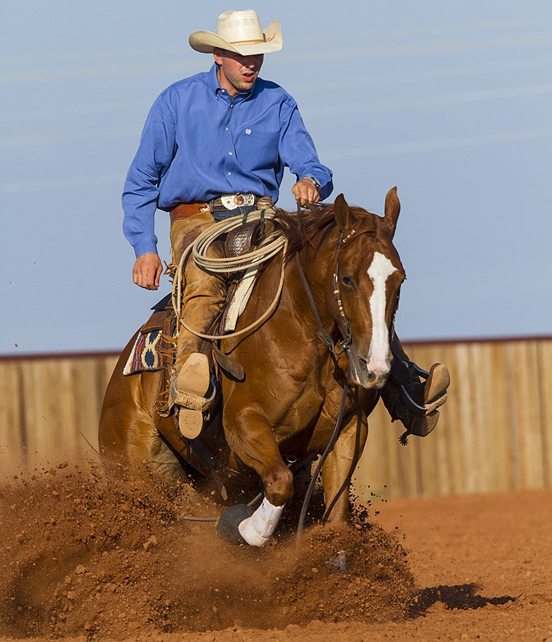 Horse performing reining stops in practicing for ranch versatility