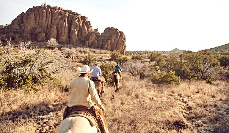 Cowboys on the trail