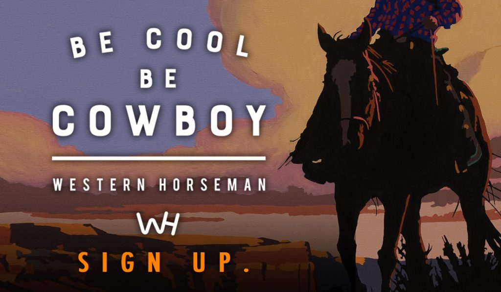 be cool. be cowboy. subscribe