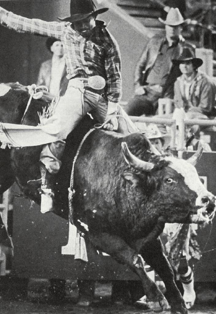 Charles Sampson on white face bull