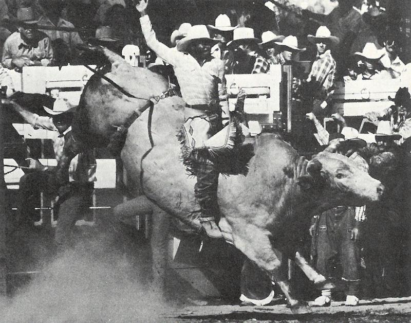 Charles Sampson rides bulll