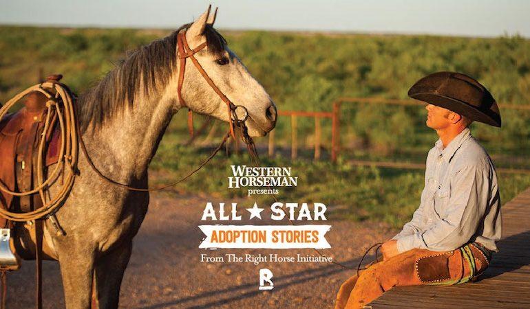 horse adoption stories graphic