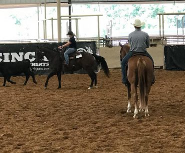 Stock Horse of Texas novice clinic at NRS