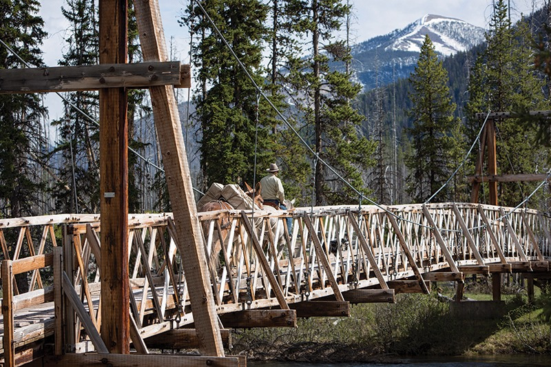 bridge Bob Marshall Wilderness Montana