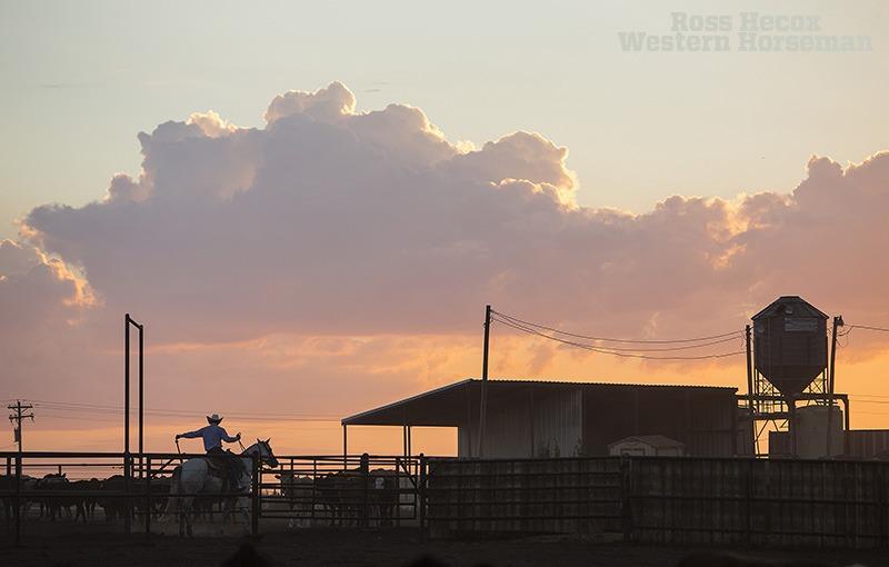 Tripp Townsend in Earth, Texas.