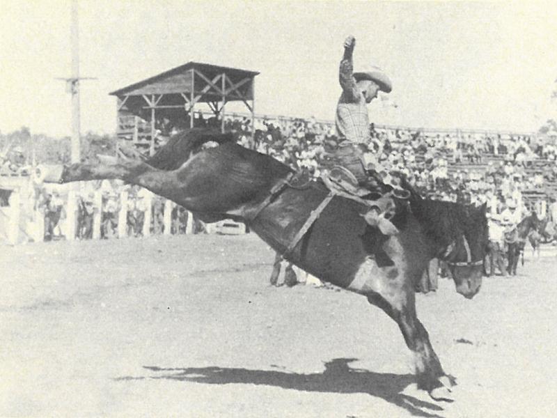 Buster Ivory riding a saddle bronc horse at Pendleton