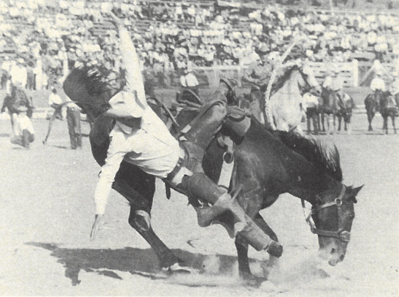 Don Dewar getting bucked off a saddle bronc horse at Pendleton