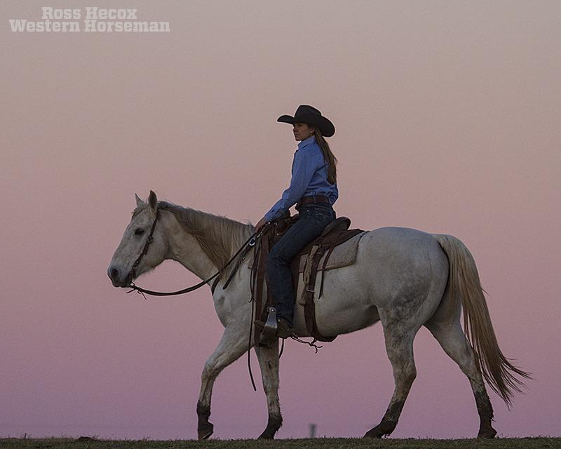 Mesa Pate Ross Hecox photo blog gray horse