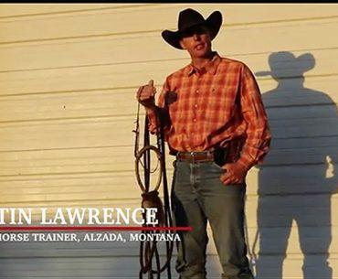 Justin Lawrence hackamore