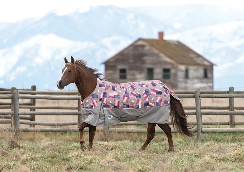 WeatherBeeta Flag horse blanket