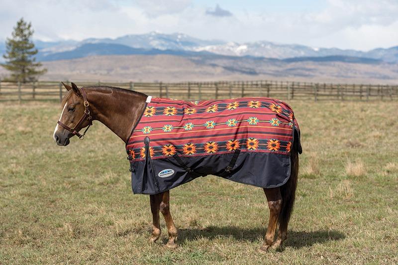 WeatherBeeta Navajo horse blanket