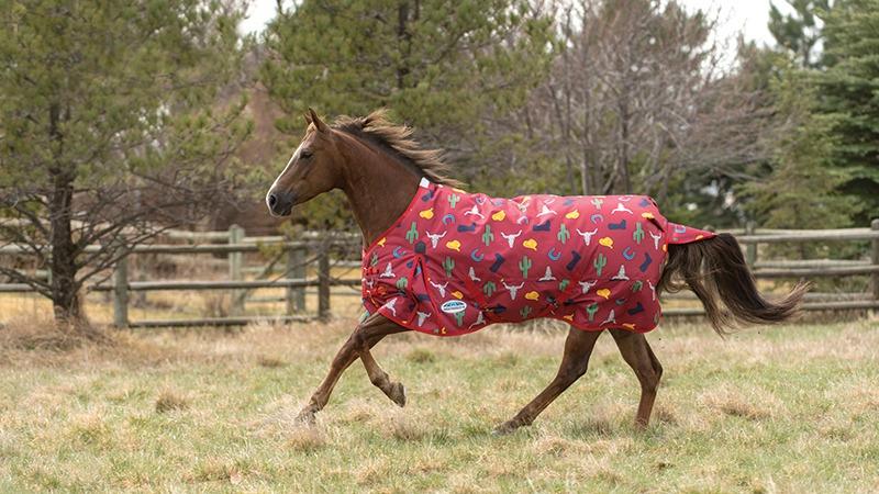 WeatherBeeta Western horse blanket