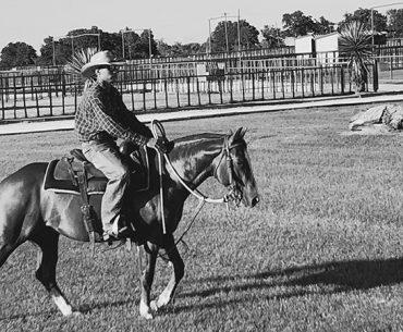 cowboy horse walk Kelli Neubert