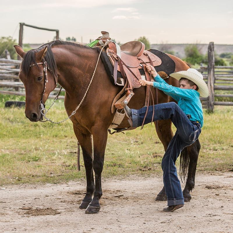 Capriola horse reins