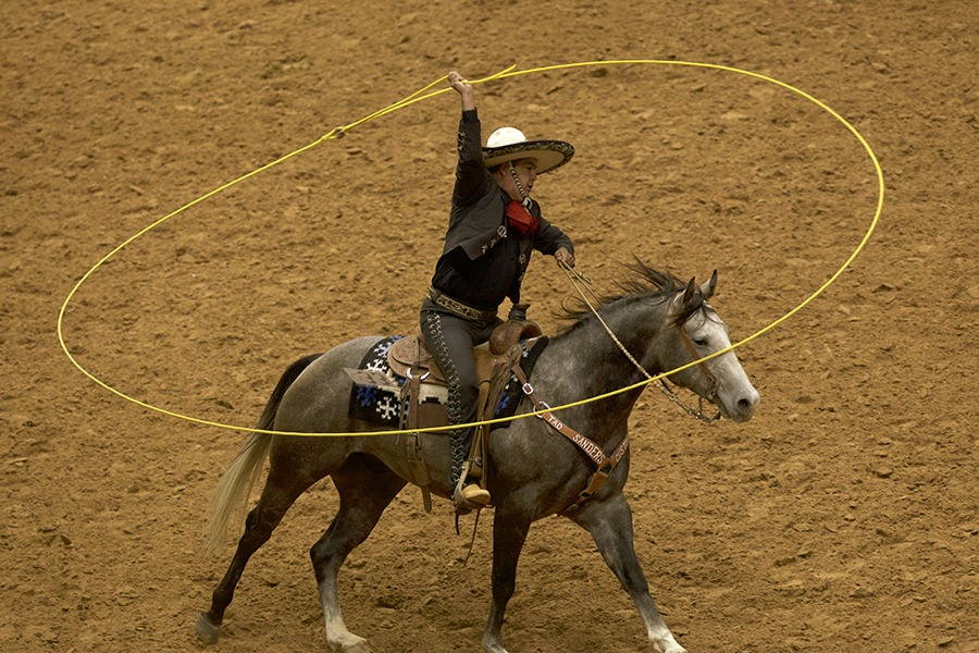 trick roper riding horse with lasso