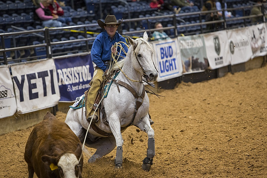rider Tripp Townsend ropes steer
