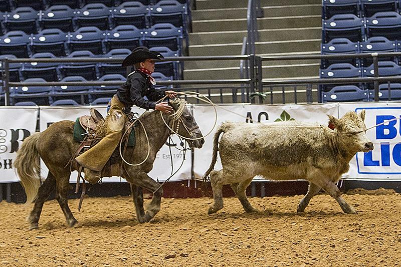 cowboy kid roping steer on pony