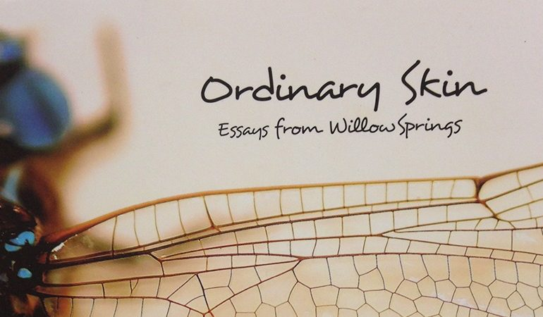 ordinary skin book review cover