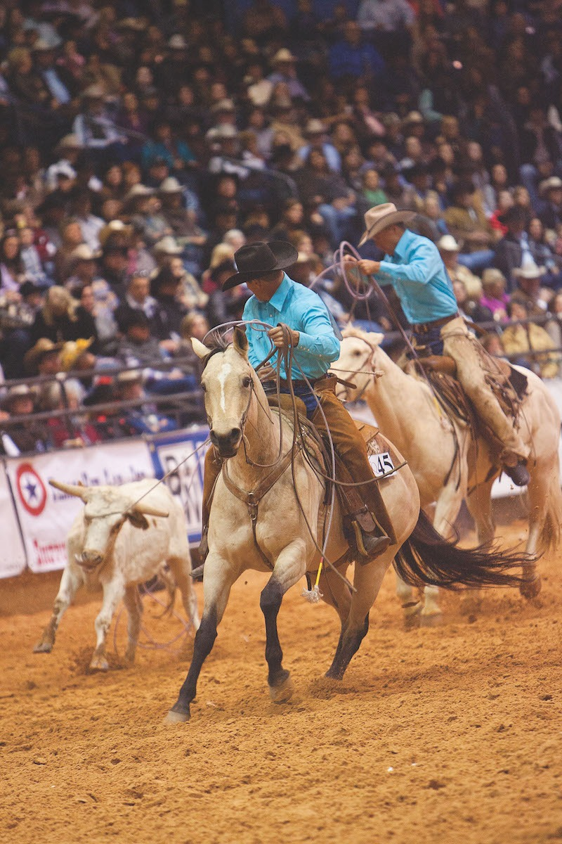 Ranch rodeo team roping a stray