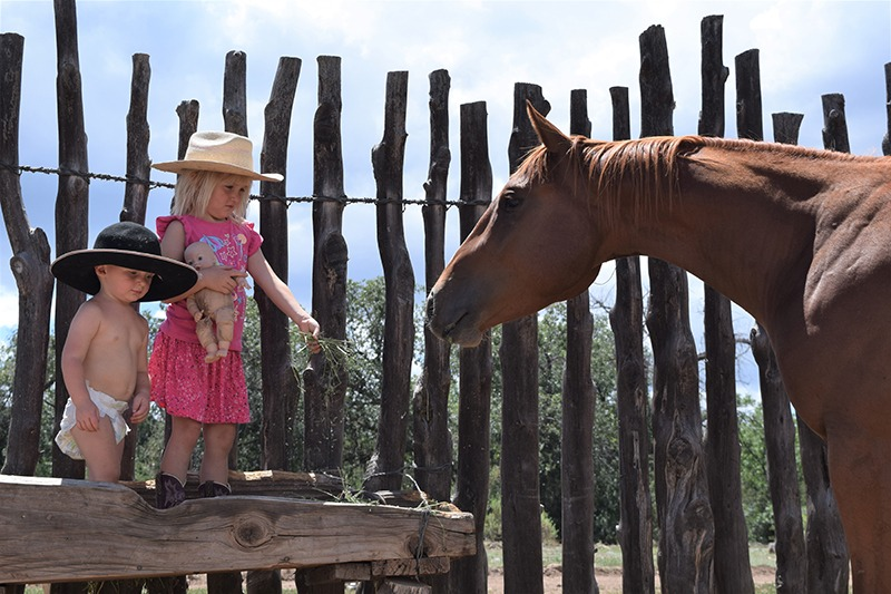 ranch kids and horse