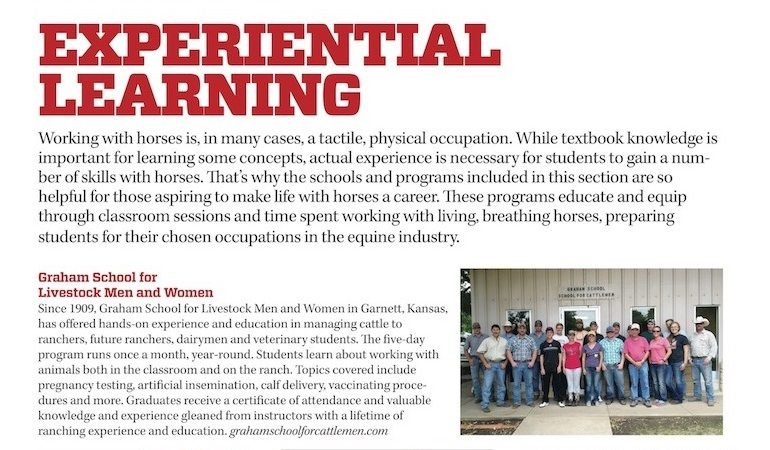 snippet from equine-related education page