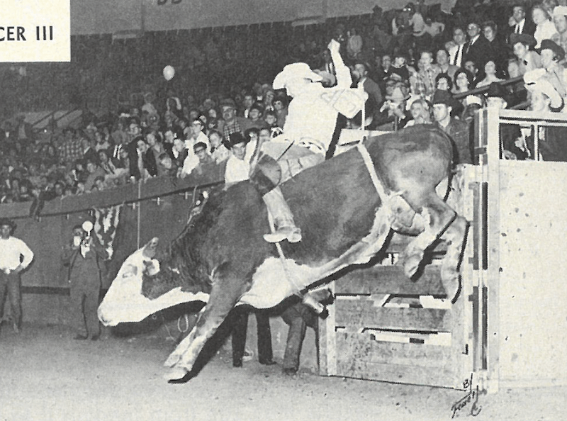 Freckles Brown riding infamous bull Tornado at the 1967 National Finals Rodeo