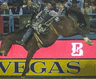 bucking horse night crawler being ridden at NFR