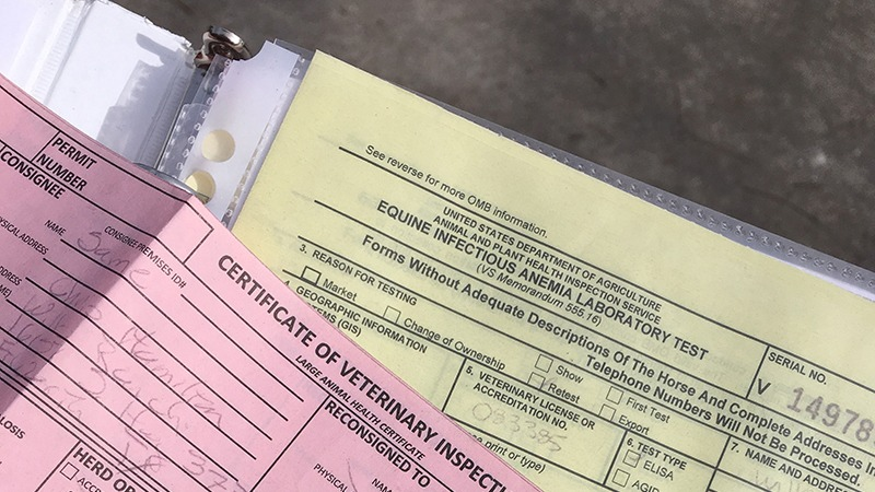 Horse health papers for interstate U.S. travel can include negative Coggins test results, health certificate and a brand inspection, depending on the state