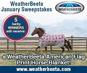 WeatherBeeta horse blankets