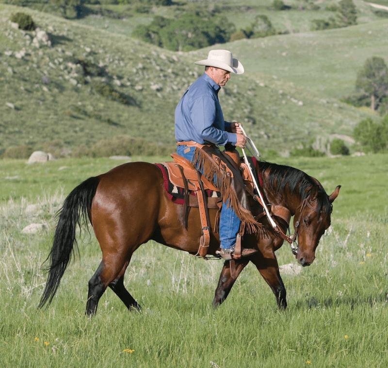 Ken McNabb riding a horse into a circle