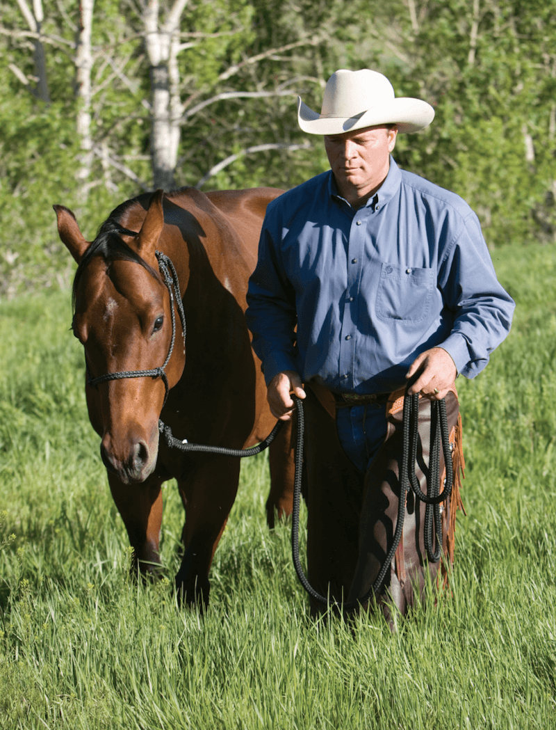 Ken McNabb leading a horse with a halter.