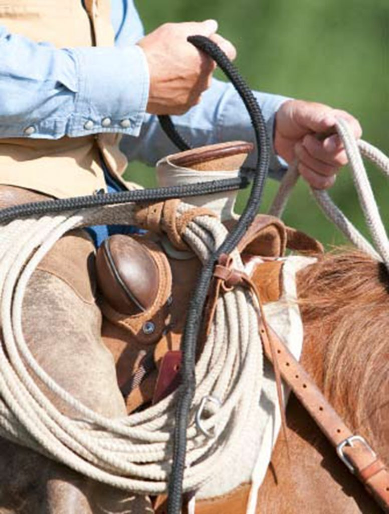 rope dallied around saddle horn