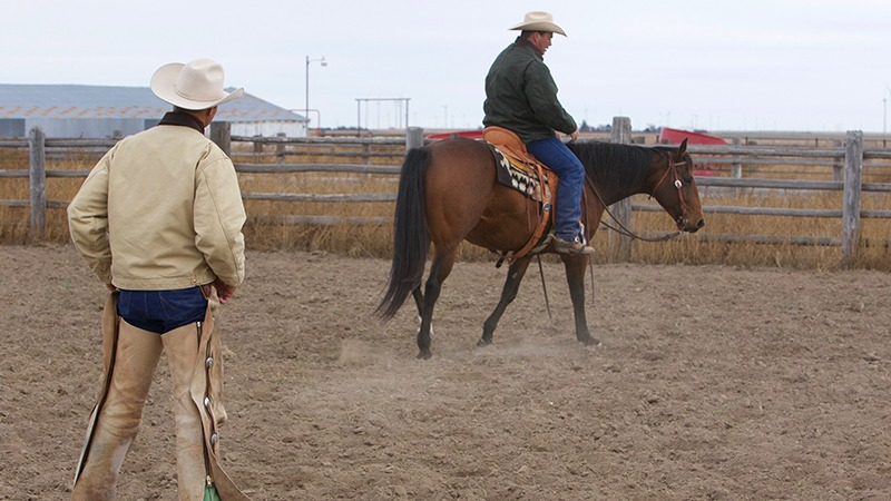 Ken McNabb riding horse in clinic