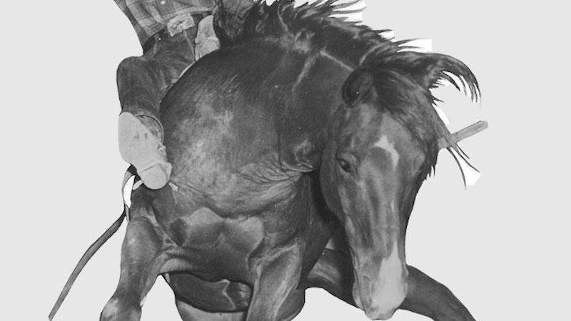 Casey Tibbs spurring a bareback horse